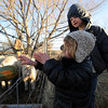"Poet MacKinnon, 2, throws a squash to the pigs, as her brother Truen watches.<br /> Mike MacKinnon does the evening chores with his children on Frog Belly Farms in Boulder County. For more photos of the farm, go to  <a href=""http://www.dailycamera.com"">http://www.dailycamera.com</a><br /> Cliff Grassmick / December 16, 2010"