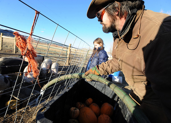 "Maitreya Rose, left, and her stepfather, Mike MacKinnon, feed the pigs on Thursday.<br /> Mike MacKinnon does the evening chores with his children on Frog Belly Farms in Boulder County. For more photos of the farm, go to  <a href=""http://www.dailycamera.com"">http://www.dailycamera.com</a><br /> Cliff Grassmick / December 16, 2010"