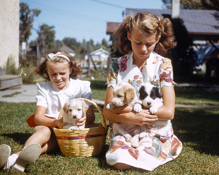 Alberta and Evelyn (my mother) holding puppies. From an old Kodachrome slide taken by Hazel in the 1940s. Judging from my mother's age I estimate this slide was taken around 1949. I was delighted to come across more of Hazel's slides. Most of them have been lost but some gems, like this shot, survive. In addition to Hazel's pictures I have also collected more of Helen's, (my paternal grandmother), and Minnie's, (a maternal great-grandmother), pictures. Minnie's pictures include old prints of some of my great-great grandparents and possibly a shot of a great-great-great grandfather.