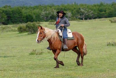 Gaucho in Chile