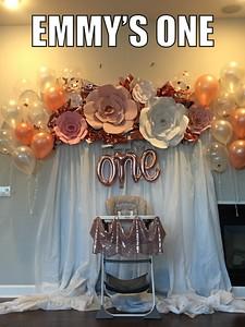 Emmy's One Year Birthday