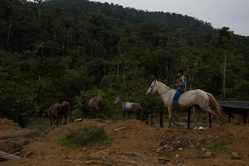 The annual production of this region is around five tons, which supposedly means two billion pesos in royalties. These revenues barely translate into social investment. Currently, the living conditions of almost 90% of the population of Guamocó are precarious according to the Luis Carlos Pérez Lawyers' Collective.