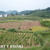 guantian shan village-2