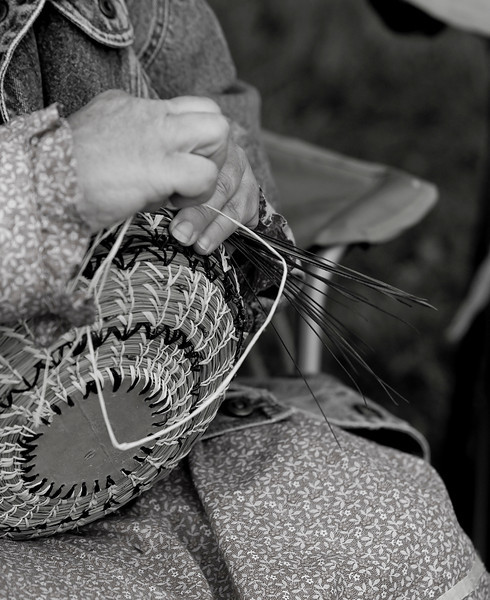 Making a basket out of long leaf pine needles