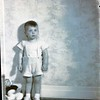 Mrs. W. G. Morrell's Son  VII   (09117)