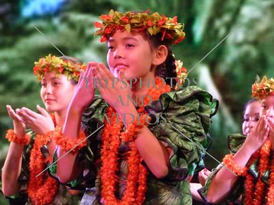 Hawaiian Traditional Dances