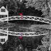 Bridge Sighting 3281 w215