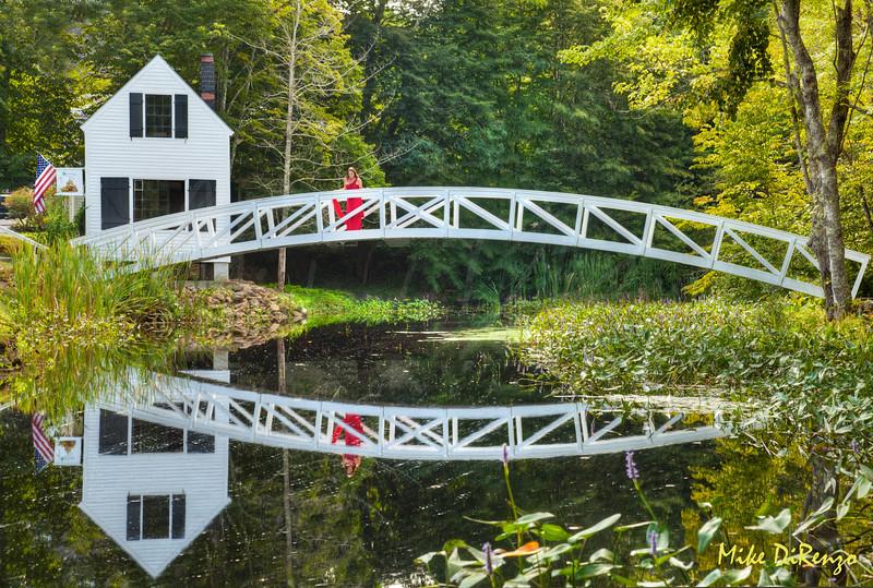 Reflecting on the Bridge  8531  w21