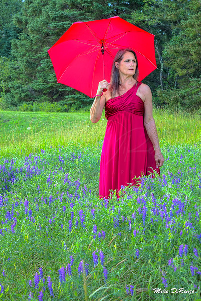 Red Dress in Lavender  1001
