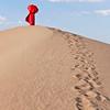 Dune Walker   0908   w21