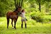Hobby-Horse-Farm-20100523-61-small