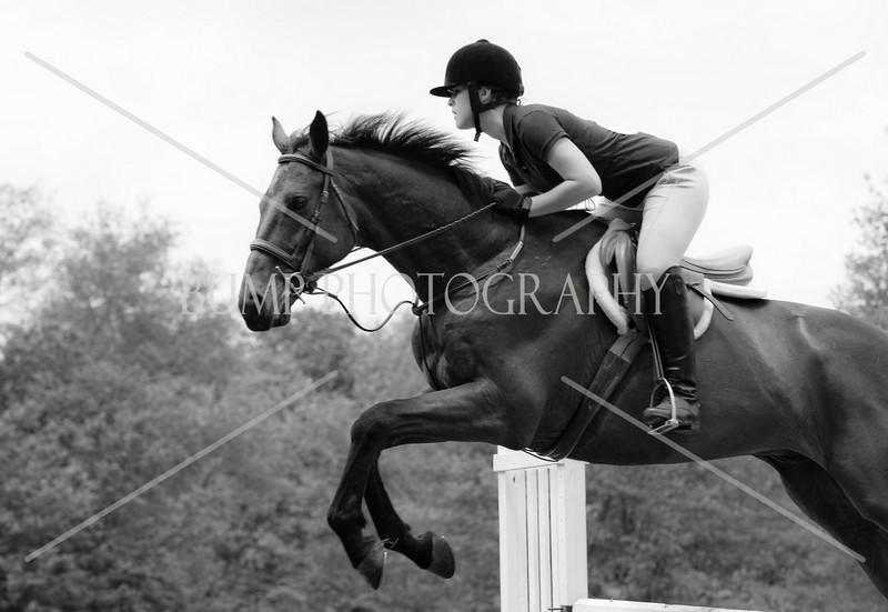 Hobby Horse Farm 20100523-36