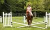 Hobby Horse Farm 20100523-27
