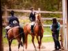 Hobby Horse -35