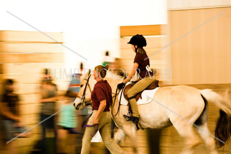 Hobby Horse Farm -72