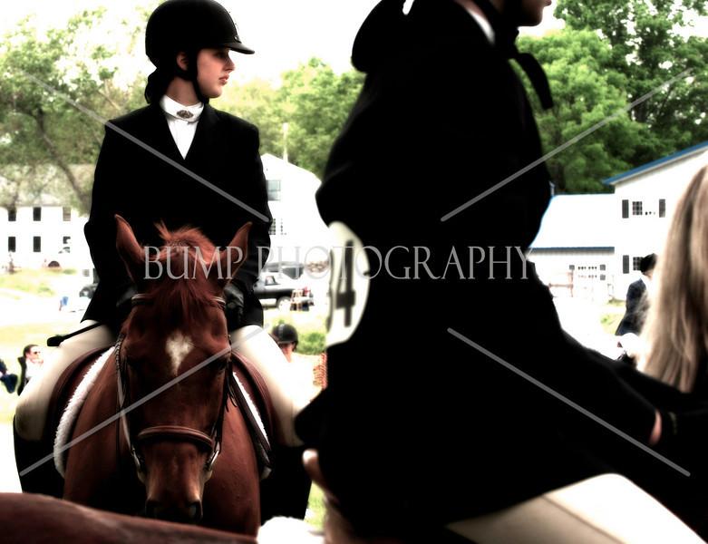 Hobby-Horse-Farm-20100523-43