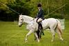 Hobby Horse Farm 20100523 -76