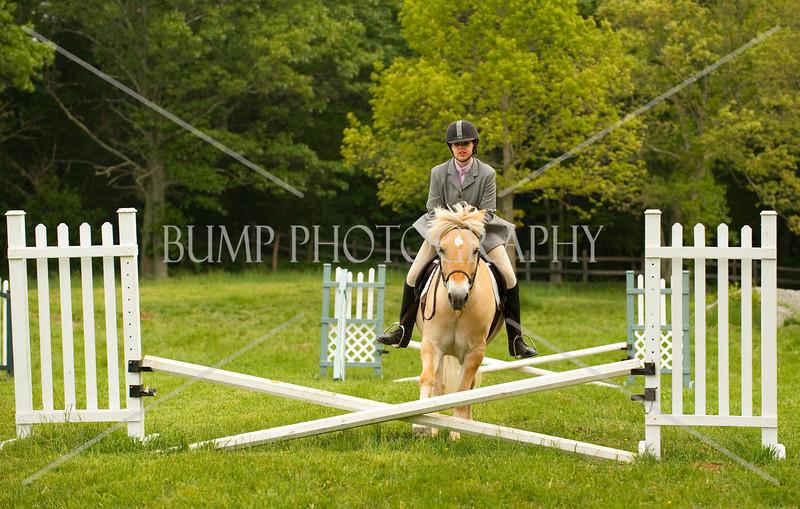 Hobby Horse Farm 20100523-30
