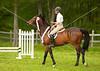 Hobby Horse Farm 20100523-59
