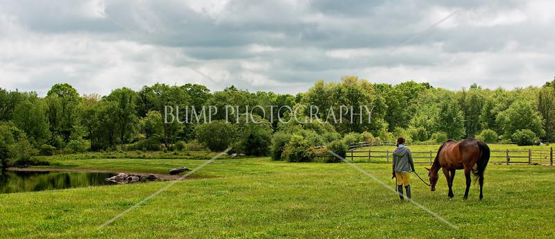 Hobby-Horse-Farm-20100523-54