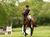 Hobby Horse Farm 20100523 -77