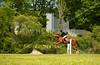 Hobby Horse Farm 20100523-46