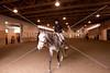Hobby Horse -54