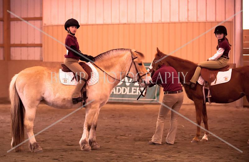 Hobby Horse -57