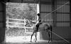 Hobby Horse -59