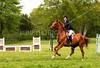 Hobby-Horse-Farm-20100523-44