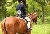 Hobby Horse Farm 20100523-3