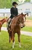 Hobby Horse Farm 20100523-11