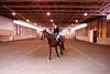 Hobby Horse -51