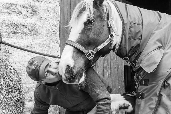 Dollee gets a kiss from Sam the farrier