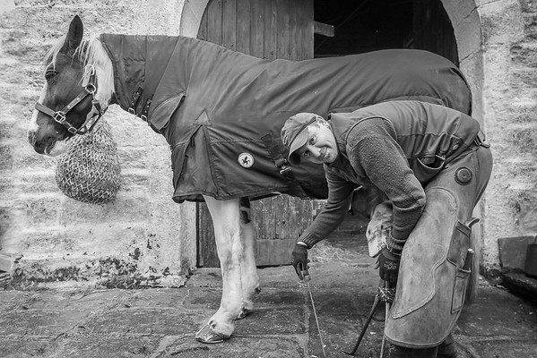 The horse and Farrier