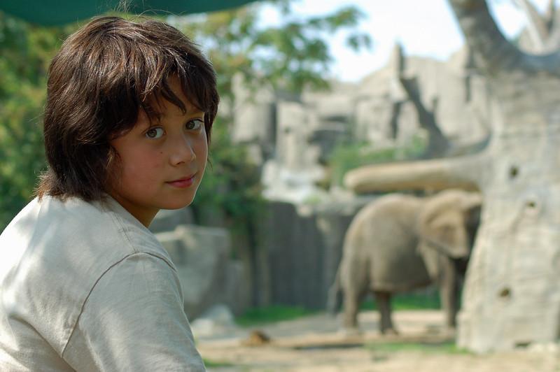Brookfield Zoo - 2006