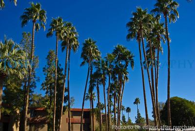 01 01 2009 Sight seeing in Arizona (13)