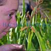 01 01 2009 Sight seeing in Arizona (29)
