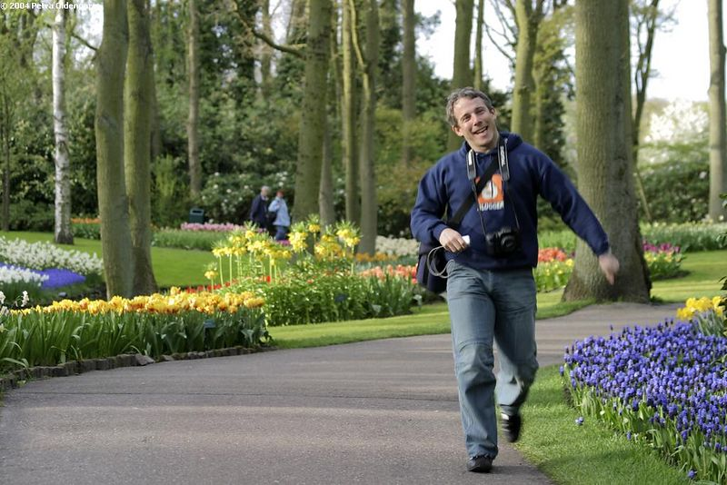 in the keukenhof