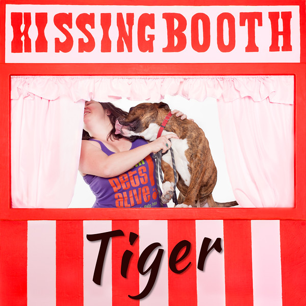 Tiger Kissing Booth - 3/29/17 - Mike Ryan