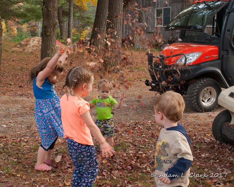 All of the kids throwing leaves