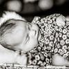 2014_0426_newborngrace_0025