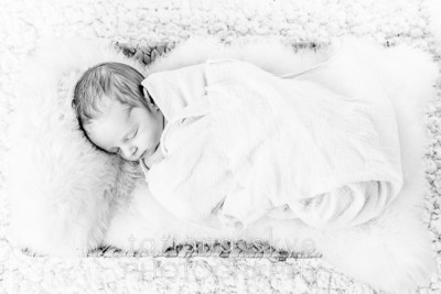2014_0118_peytonnewborn_0333
