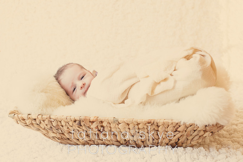 2014_0118_peytonnewborn_0286