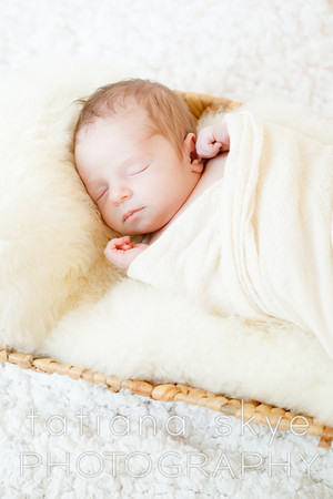 2014_0118_peytonnewborn_0373