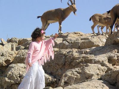 Mizpe Ramon, Israel