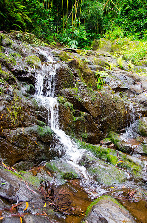 Nuuani-Pali waterfall 0912 4876