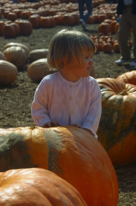 Of course, Erin has her own thoughts on the perfect pumpkin! (October, 2004)