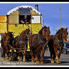 """Lee the Horse Logger"" is the man who travels the highways of the United States with his team of horses pulling his home."