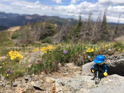 Lego photography - Lobo overlook Wolf creek ski area Colorado